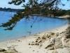 Fouesnant - Les plages